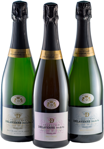 Champagner Beginner Selection Delavenne Grand Cru